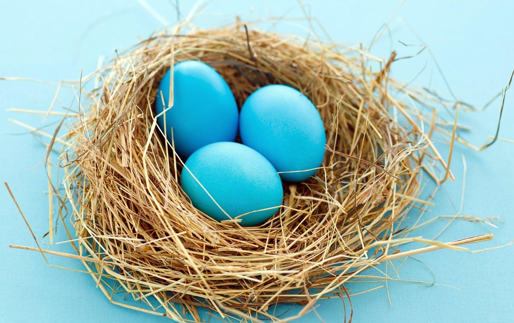 Mavi Yumurta - Türkiye