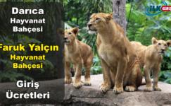 Darıca Hayvanat Bahçesi – Faruk Yalçın Hayvanat Bahçesi 2019 Giriş Ücretleri