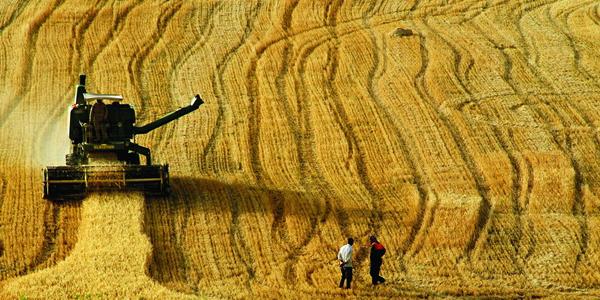 Çiftçiye Destek