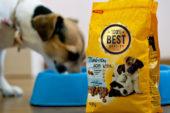 Evde Köpek Maması Paketleme İşi İle Para Kazanma